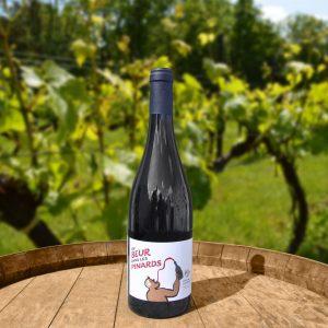 Vionnet du beur dans les pinards rouge 2019